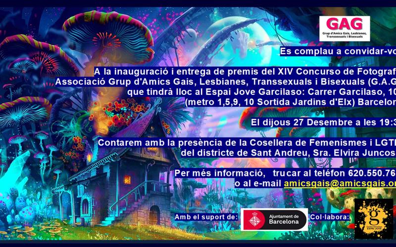 Concurs GAG 2018 – 27 desembre 19:30
