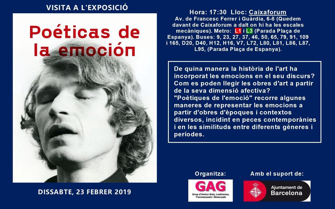 Visita a la Exposición – Poéticas de la emoción – 23 febrero